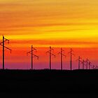 Sunset Electric  by lorilee
