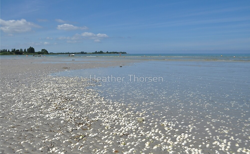 Shell, sand, sea and sky by Heather Thorsen