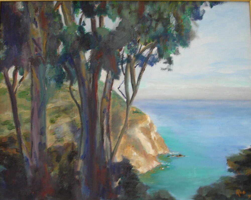 Decanso Beach, Catalina Island by Roderick Reed
