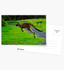 iHop 2.0 Postcards
