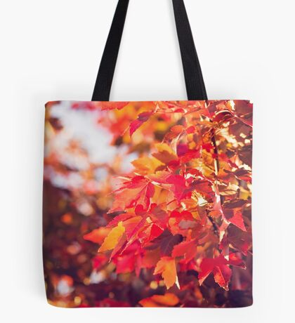 Autumn leaves of red and gold Tote Bag