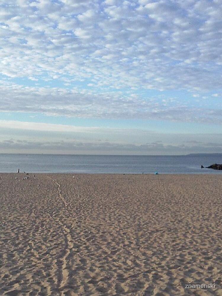 #Sand #beach #sea #sky #sand #water #ocean #coast #blue #nature #summer #landscape #clouds #wave #shore #seaside #cloud #coastline #horizon #travel #seascape #vacation #sunset by znamenski