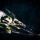 Lonesome Crow by Nigel Bangert