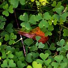 Tucked Away for Fall by Otto Danby II