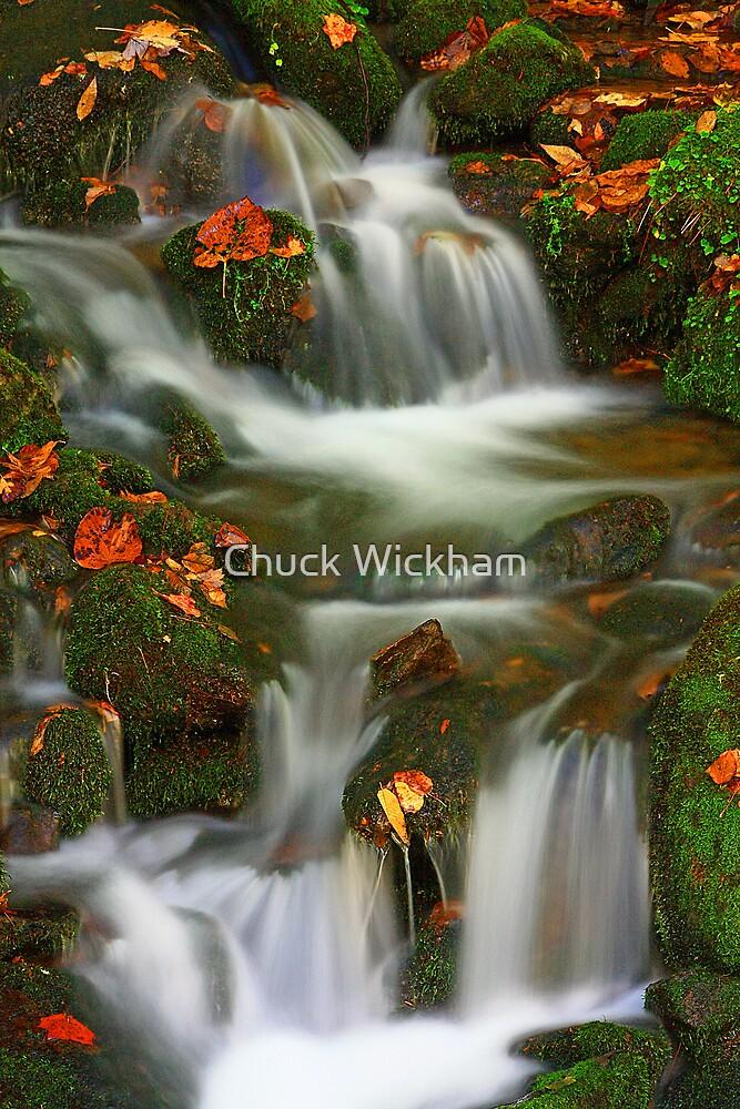 MOSSY CASCADE by Chuck Wickham