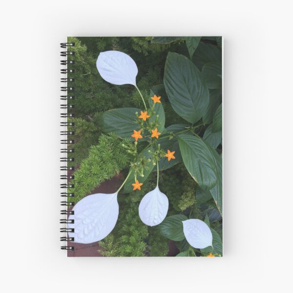 Enid A. Haupt Garden at the Smithsonian Castle Spiral Notebook
