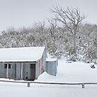 Winter Refuge, Bluff Hut, Alpine National Park, Victoria, Australia by Michael Boniwell