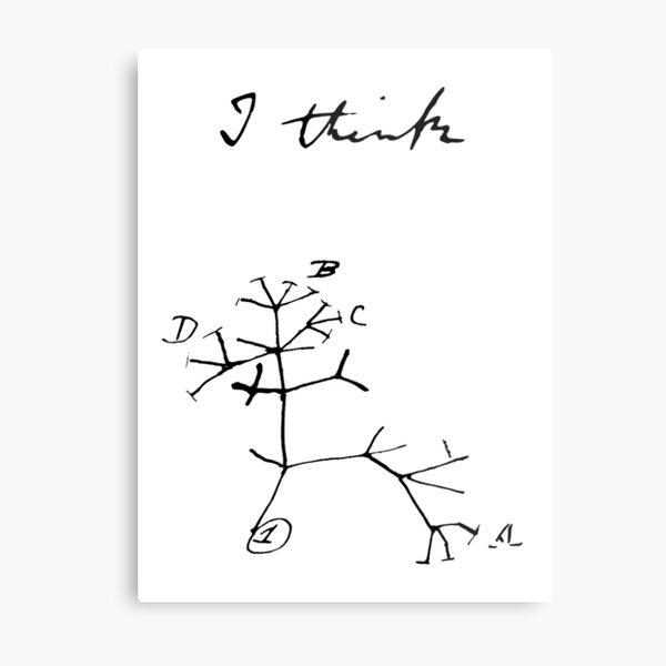 Darwin - Tree of Life - I Think Metal Print