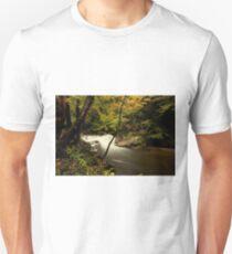 Laurel Creek Cascade T-Shirt