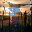 Country And Western by R&PChristianDesign &Photography
