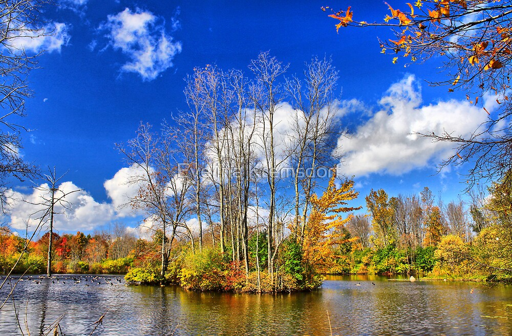 Fall at a Pond by Evelina Kremsdorf