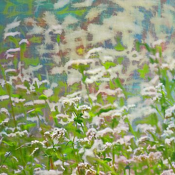 Abstract meadow by blackhalt