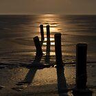 Light & Shadows by Jo Nijenhuis
