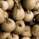 Denim Commercial Pumpkins by K Gilks