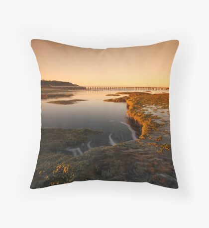 Late Afternoon Sun Throw Pillow