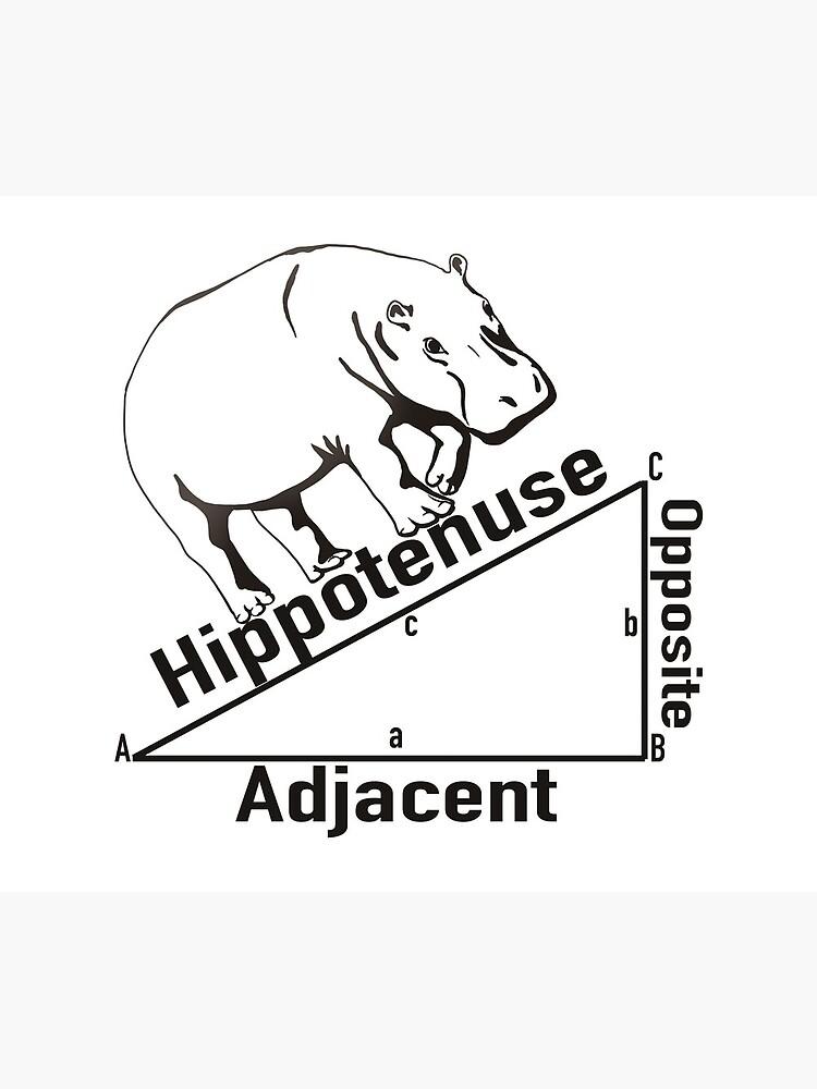 Hippotenuse by MichaelRellov