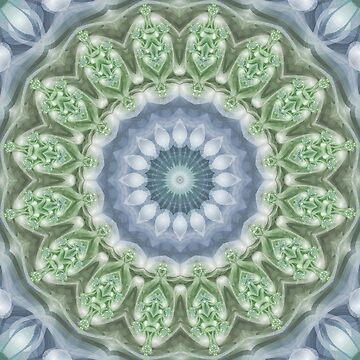 Slate Blue and Green Mandala by kellydietrich