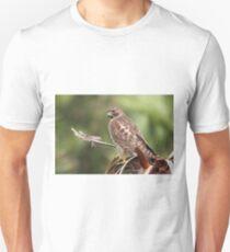 Red-shouldered Hawk  Unisex T-Shirt