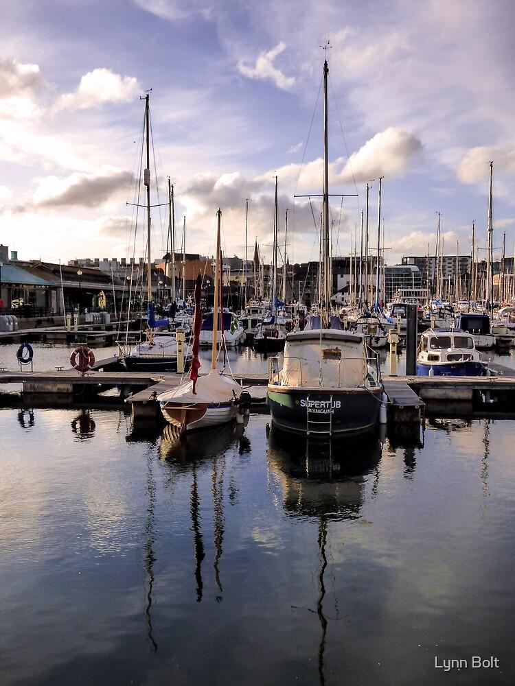 Sutton Harbour Marina Plymouth by Lynn Bolt