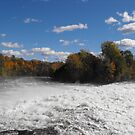 Healey Falls by Tracy Wazny