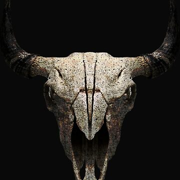 Buffalo Skull by grafoxdesigns