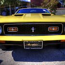 '71 Mach 1 by Terence Russell