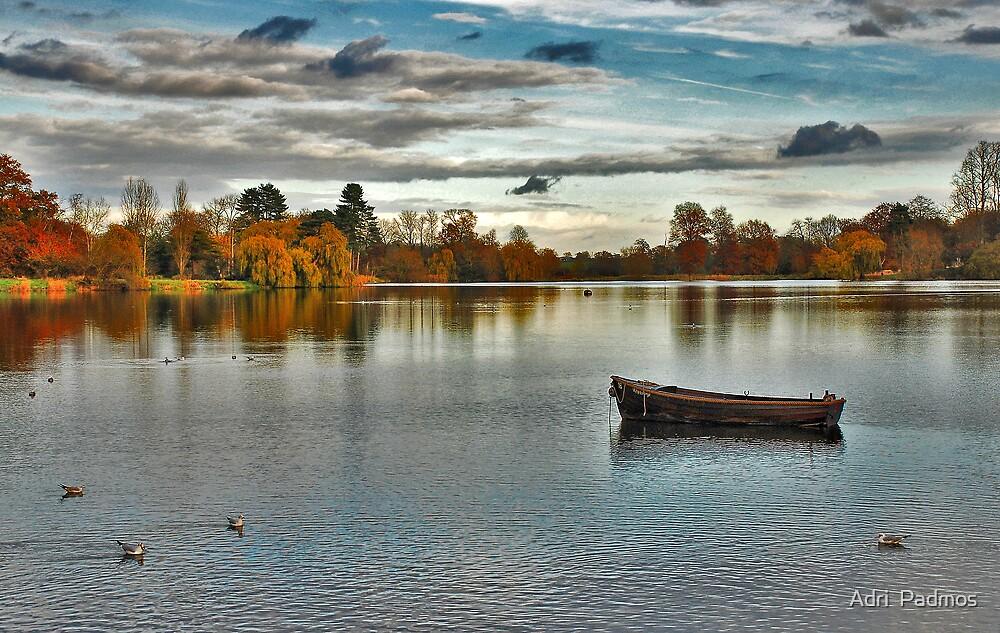 Hever Castle Lake by Adri  Padmos