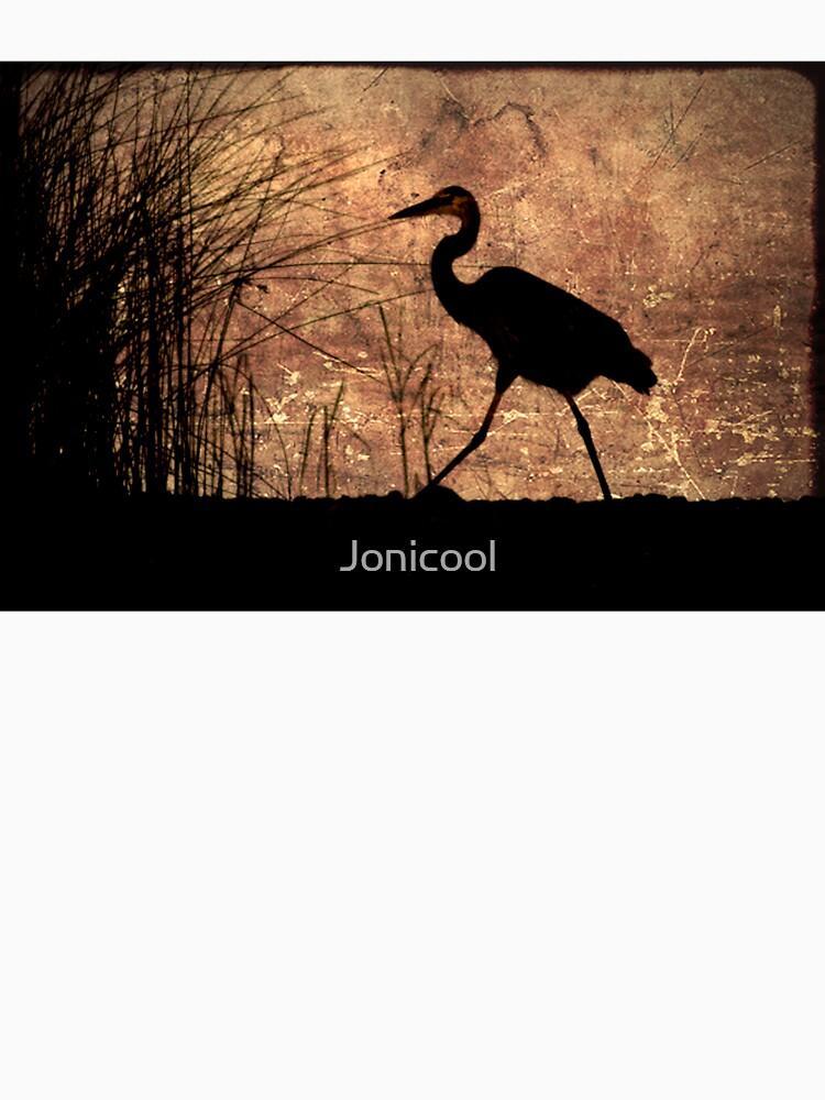 Bayou Walk by Jonicool