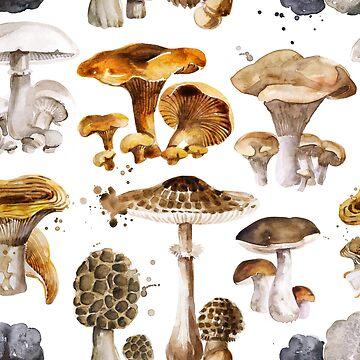 Mushrooms by torysevas