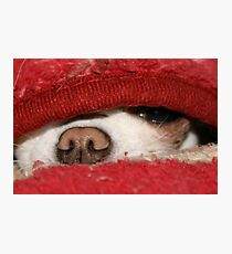 Under Cover Girl Photographic Print