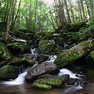 Gatlinburg Stream by Scarlett