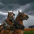 Storm's a Comin'  by Scarlett