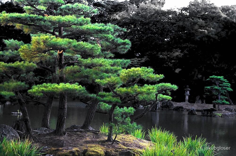 Tree by jakubgloser