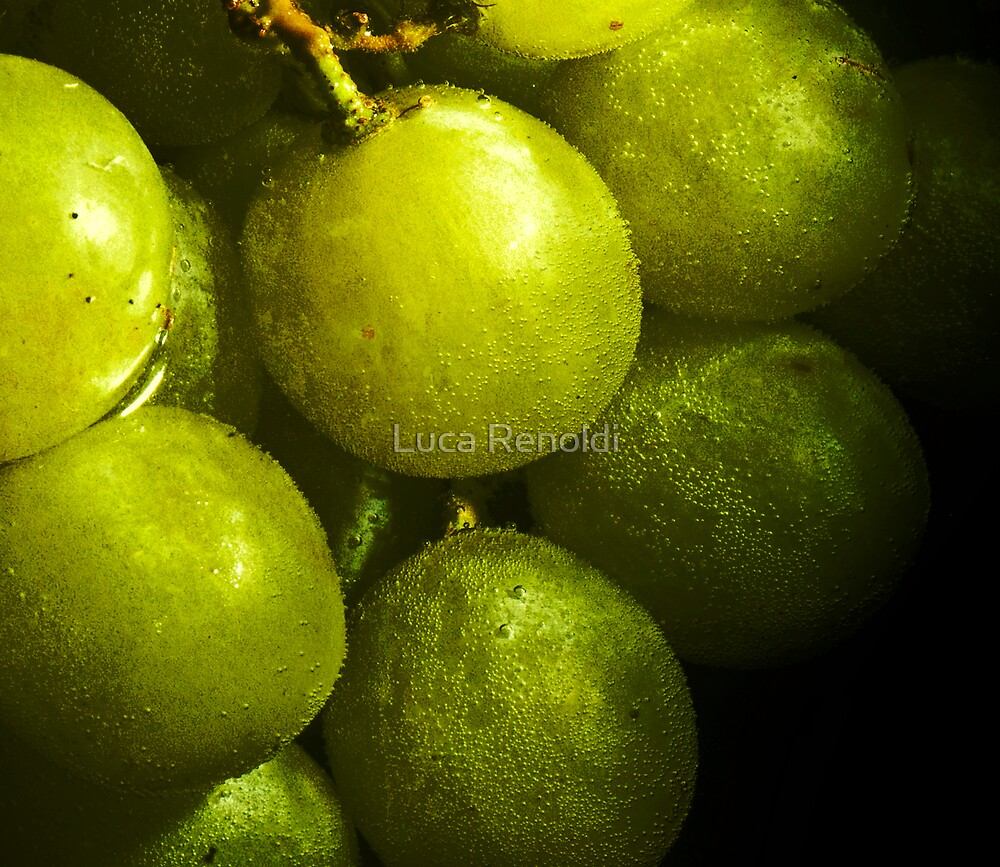Grapes by Luca Renoldi