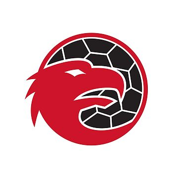 European Eagle Handball Mascot by patrimonio