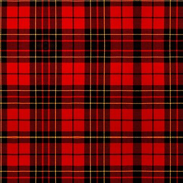 BRODIE RED MODERN TARTAN by IMPACTEES