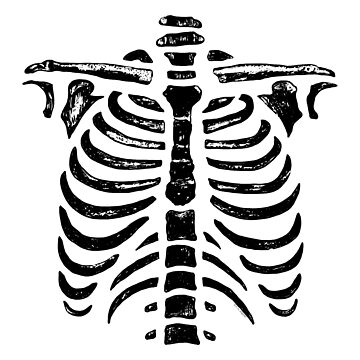 Halloween Skeleton Rib Cage by ArtVixen