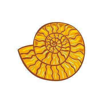 Ammonite Retro by patrimonio