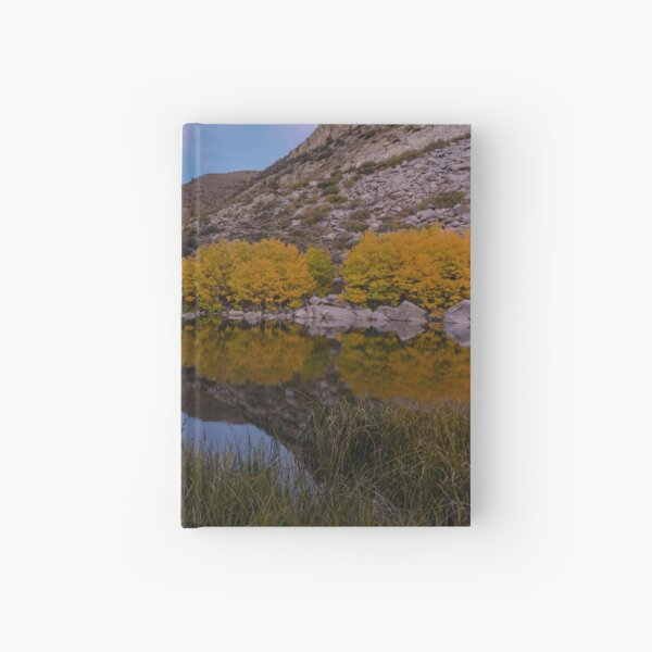 Bishop Fall Reflection Hardcover Journal