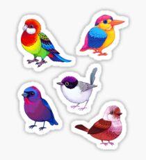 Pride Bird Sticker Set #1 Sticker