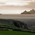 Skellig Michael, Ireland by Monica Di Carlo