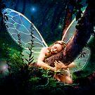 The Forest Loving Faerie by John Poppleton