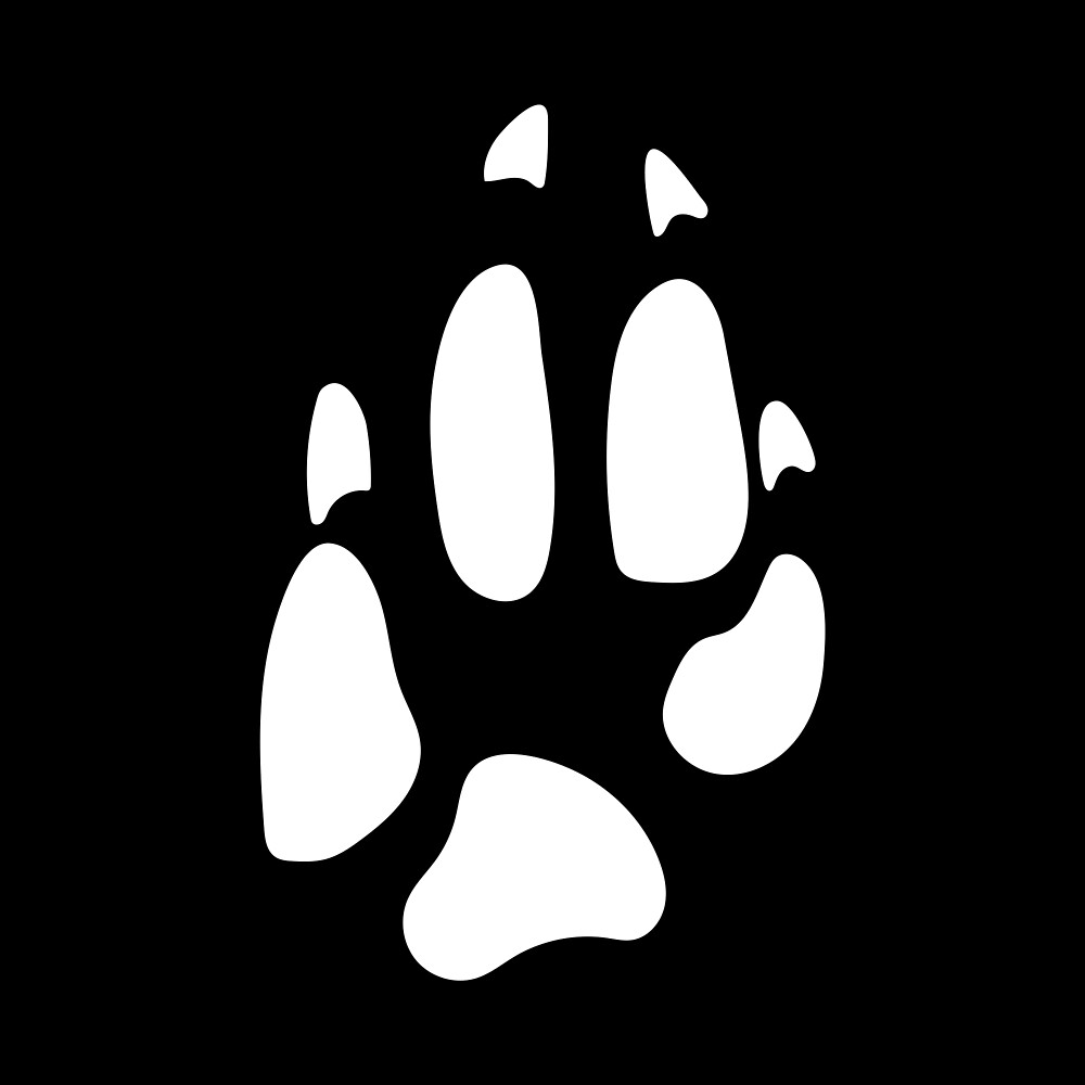 Aardwolf: Tracks by FaunaFocus