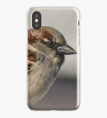Male Sparrow iPhone Case/Skin