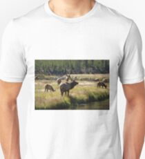 Bull Elk - Yellowstone Unisex T-Shirt