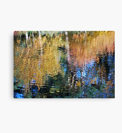 world of colour Canvas Print