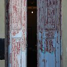 distressed doors by linsads