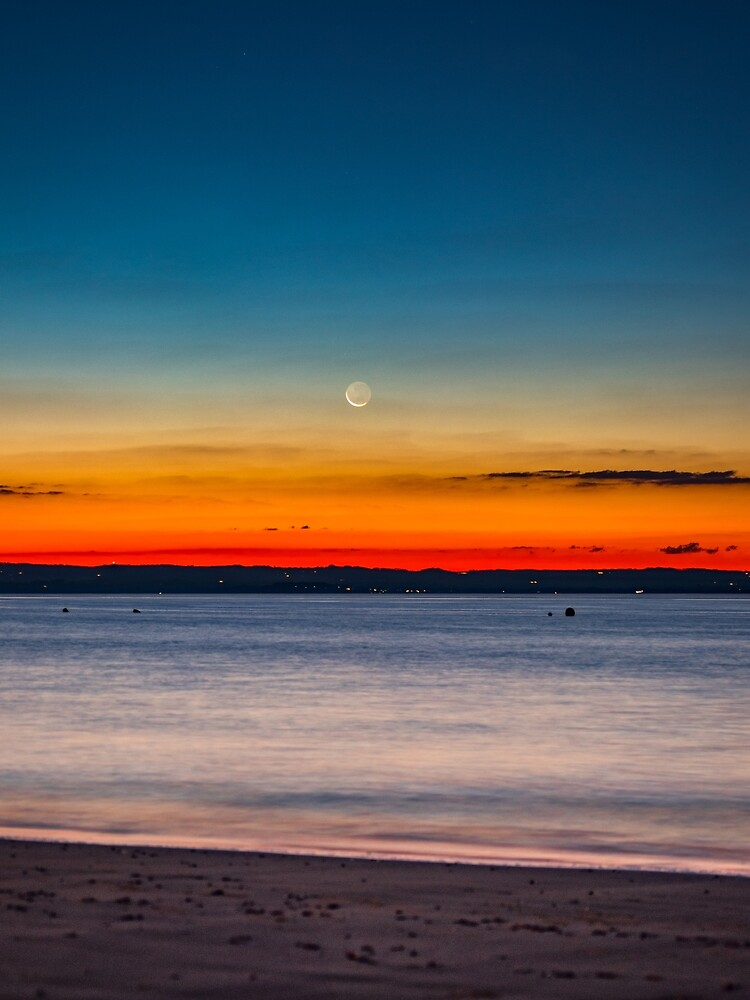 Twilight New Moon by aiinojani