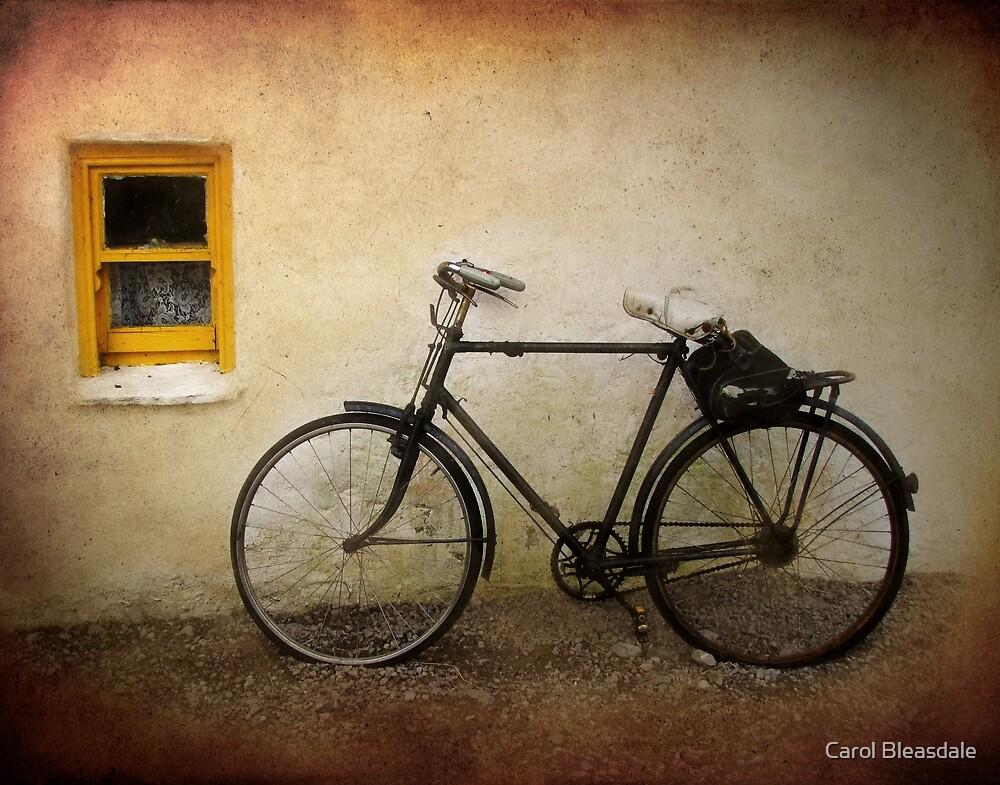 Wheels of Time by Carol Bleasdale