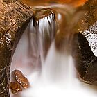 Waterscapes #1 by Prasad